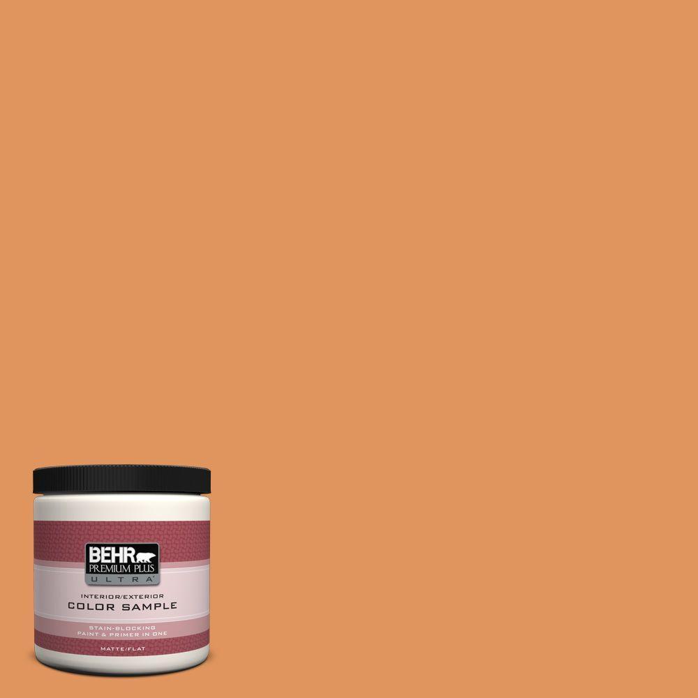 8 oz. #M230-6 Amiable Orange Interior/Exterior Paint Sample