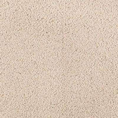 Carpet Sample - Wesleyan II - Color Abalone Texture 8 in. x 8 in.