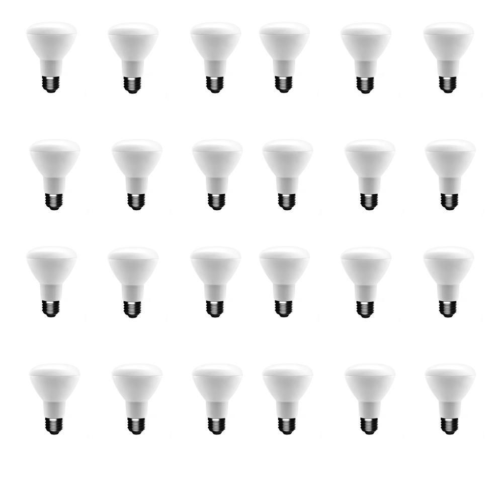 50-Watt Equivalent BR20 Dimmable LED Light Bulb Daylight (24-Pack)