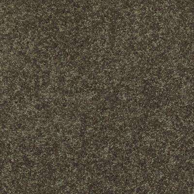 Palmdale II - Color Forest Path 12 ft. Carpet