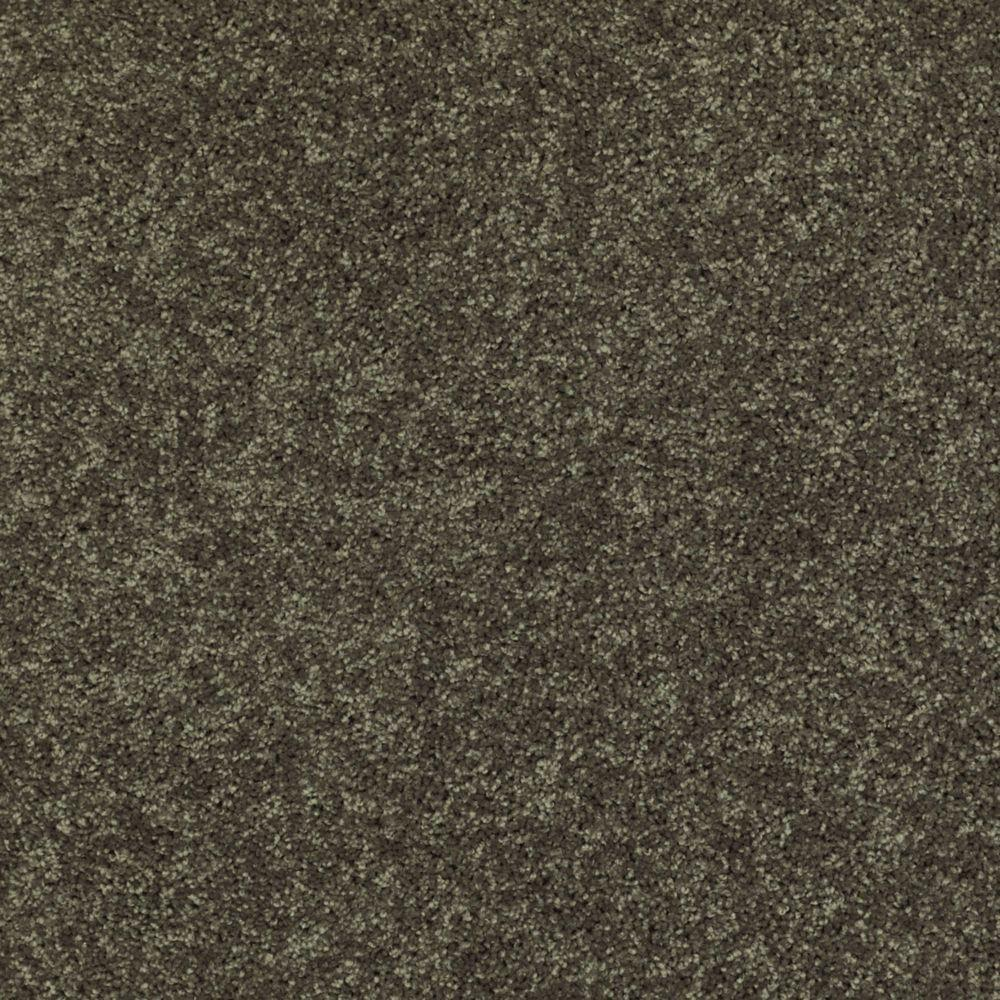 TrafficMASTER Palmdale I - Color Forest Path 15 ft. Carpet
