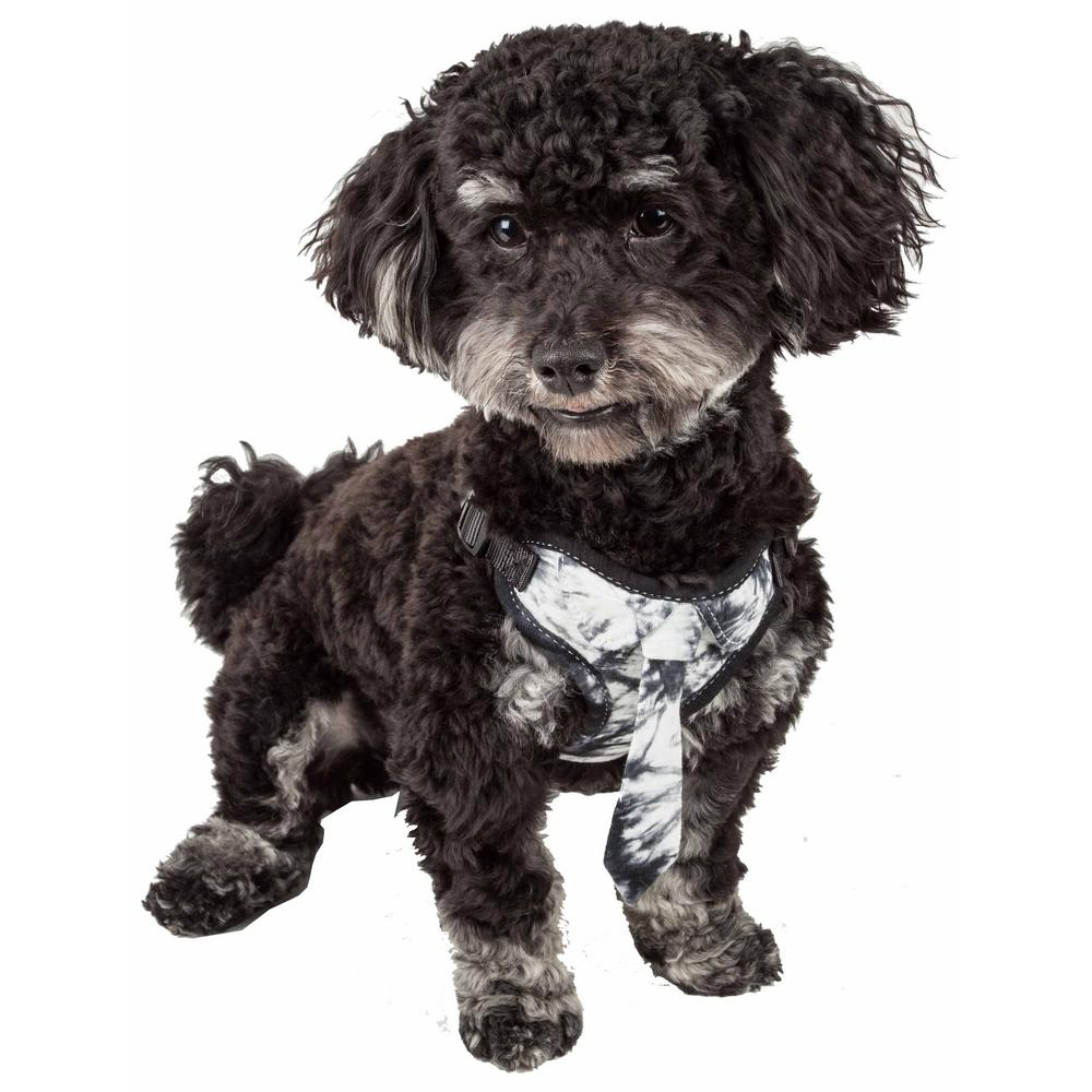 Bonatied Medium Reversible and Adjustable Dog Harness with Neck Tie in