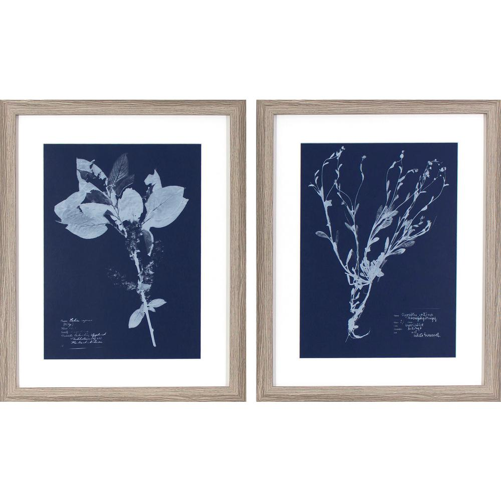 Decor therapy 22 in x 18 in flower blueprints printed for Where to get blueprints printed