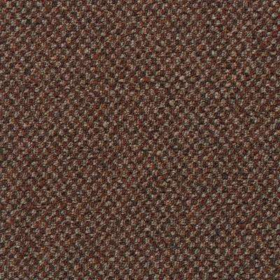 Colwick - Color Sienna Pattern 12 ft. Carpet