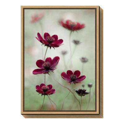 """""""Cosmos sway"""" by Mandy Disher Framed Canvas Wall Art"""
