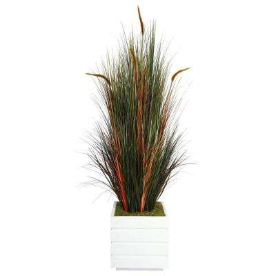 66 in. Tall Onion Grass with Cattails in 14 in. Fiberstone Planter