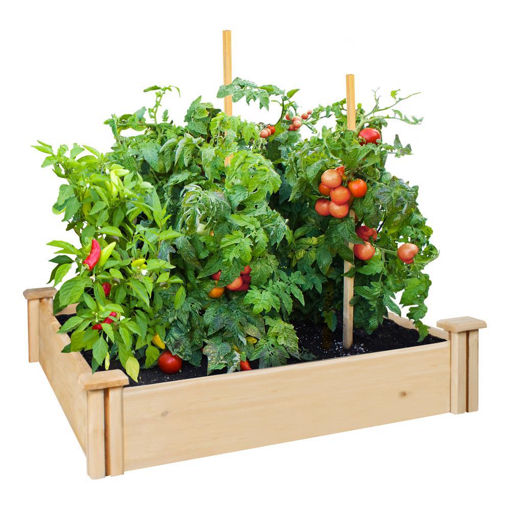 Natural Cedar Raised Garden Beds: Greenes Fence 42 In. X 5.5 X 42 In. Premium Cedar Raised