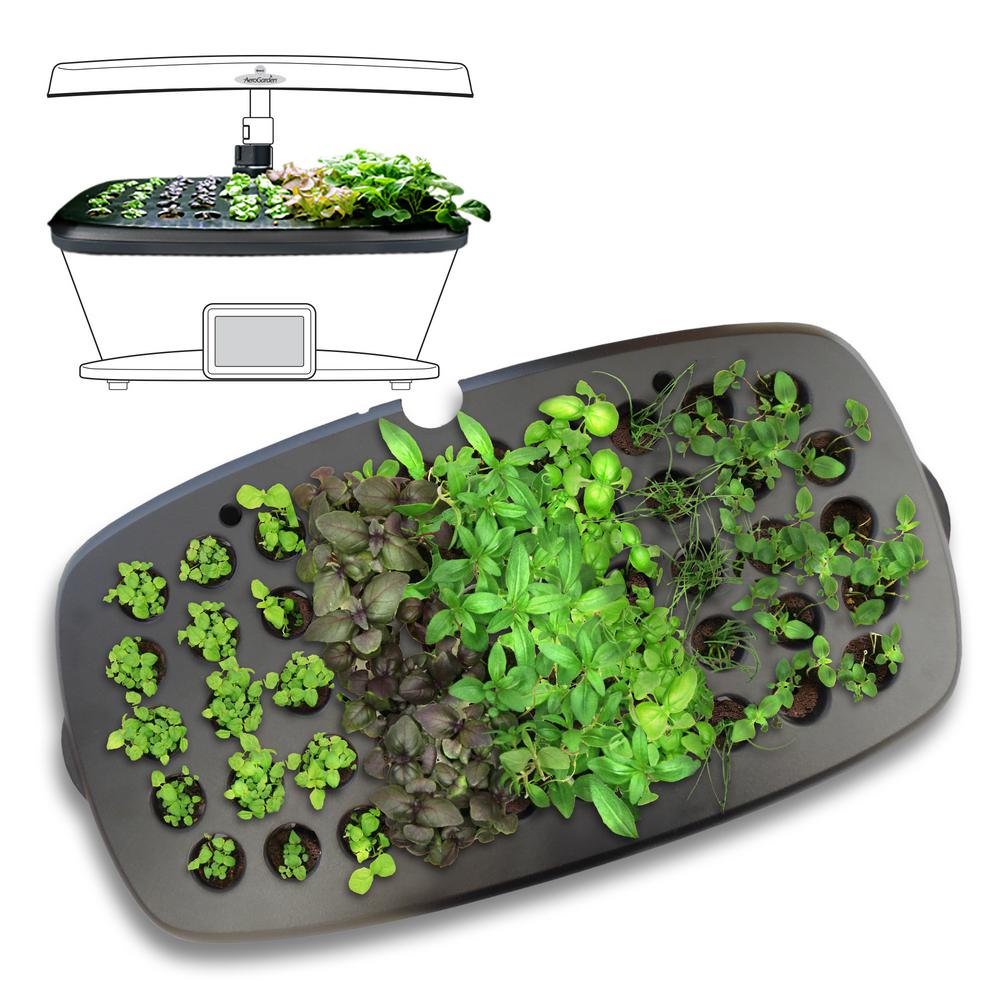 AeroGarden Seed Starting System for Extra, Black Plastic