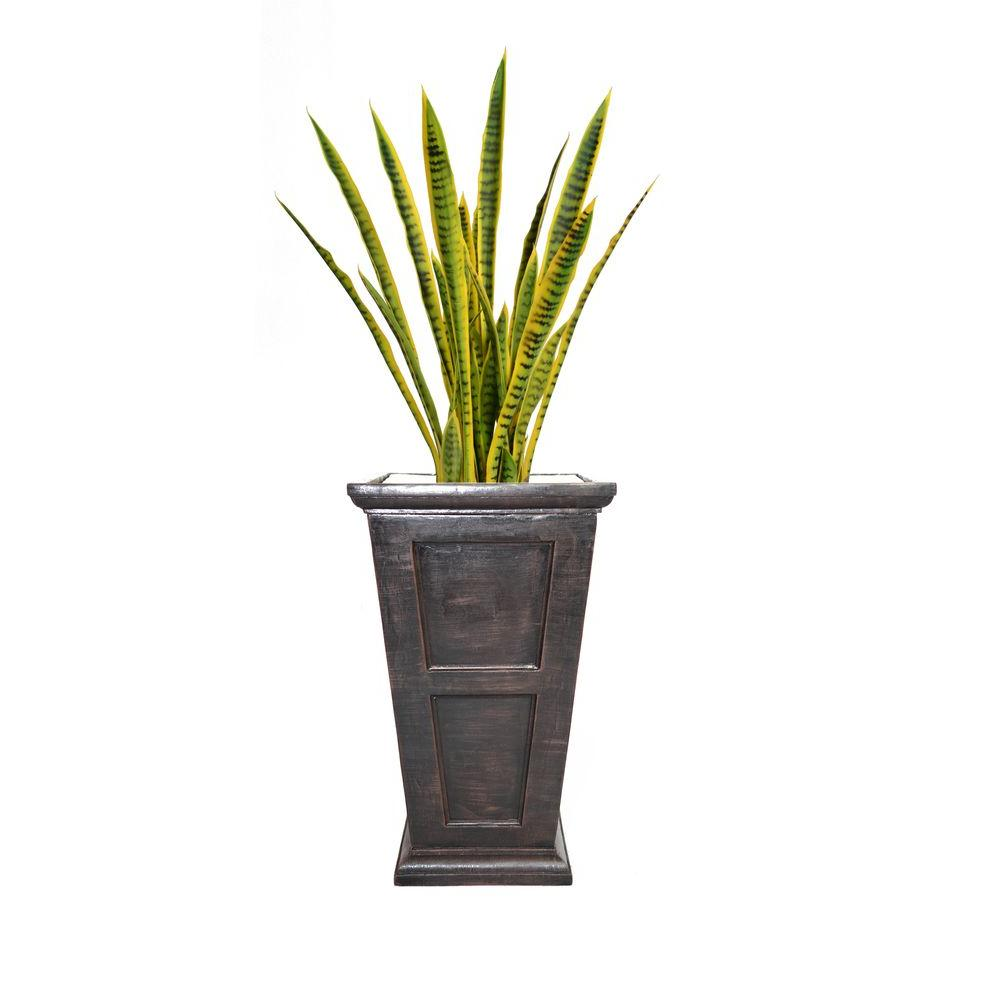54 in. Tall Snake Plant in Planter