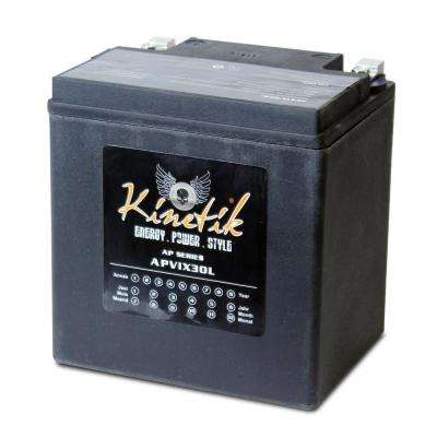 Sealed AGM V-Twin Heavy Duty 12-Volt 30 Ah Capacity HD Terminal Battery