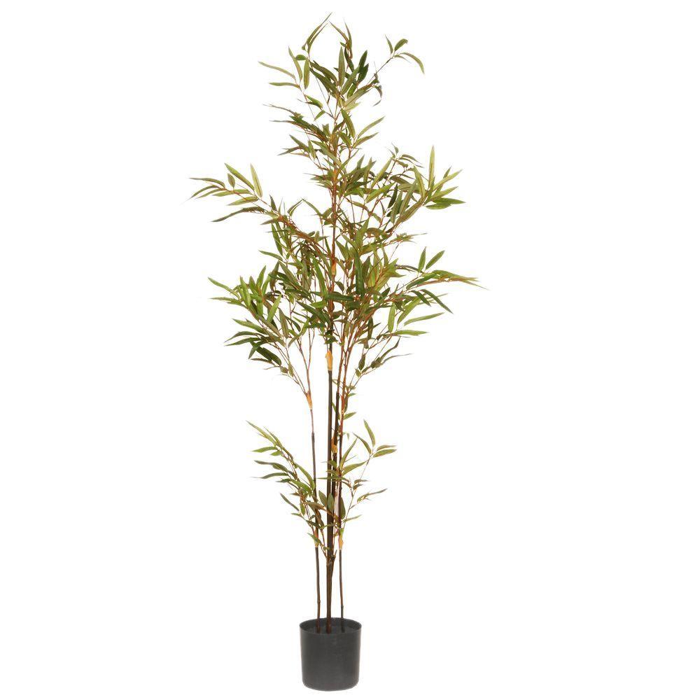 4 ft. Mini Black Bamboo Potted Tree