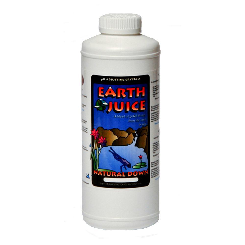 1.6 l Natural Down pH Adjuster