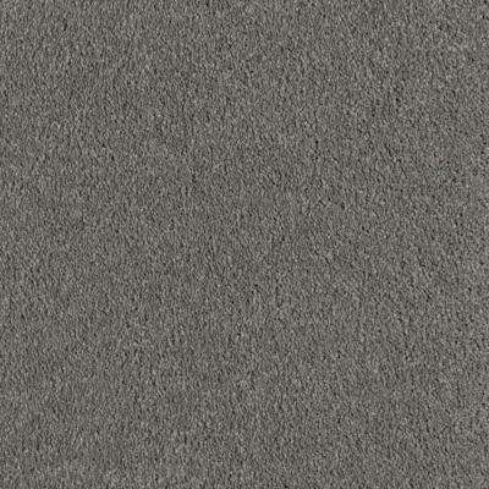 Velocity I - Color Fedora Grey Texture 12 ft. Carpet