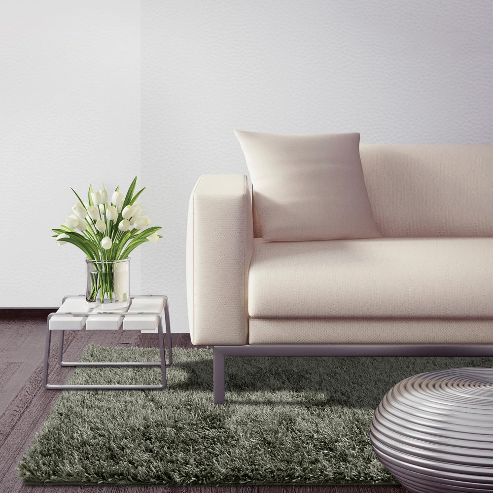 Home Decorator Collection Rugs