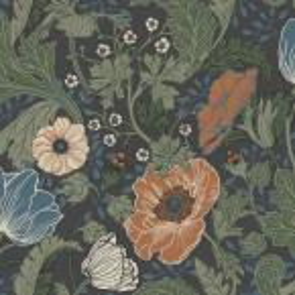 Anemone Multicolor Floral Wallpaper