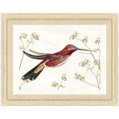 20 in. x 24 in. Hummingbird Scene IV Framed Archival Paper Wall Art