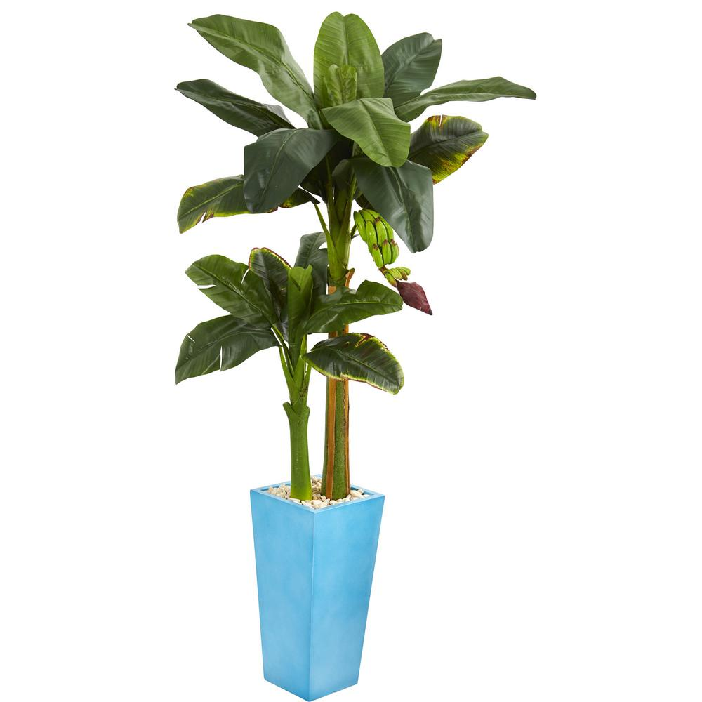 5.5 ft. High Indoor Banana Artificial Tree in Turquoise Tower Vase