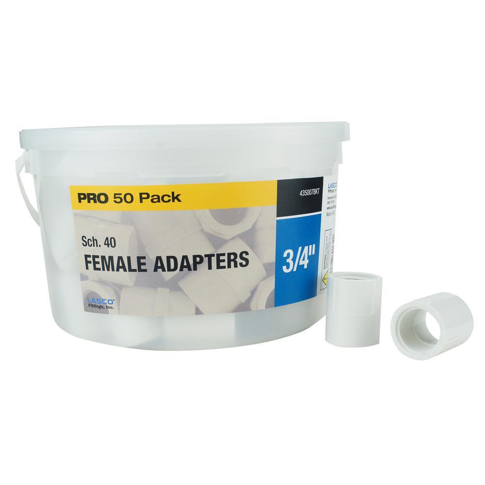 3/4 in. Sch. 40 PVC Female Adapter (50-Pack)
