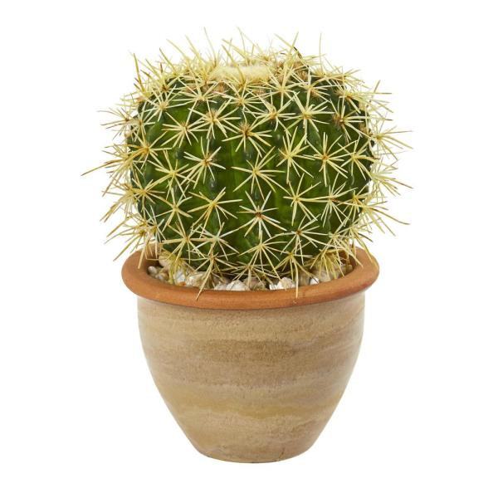 10 in. Cactus Artificial Plant in Decorative Ceramic Planter