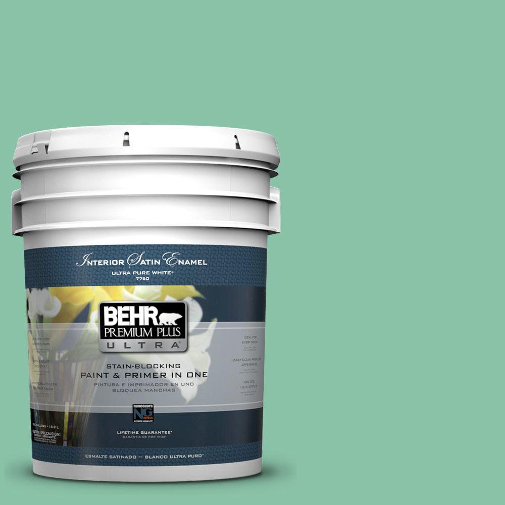 BEHR Premium Plus Ultra Home Decorators Collection 5-gal. #HDC-WR14-8 Spearmint Frosting Satin Enamel Interior Paint