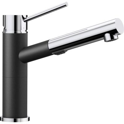 ALTA Single-Handle Pull-Out Sprayer Kitchen Faucet in Anthracite/Polished Chrome