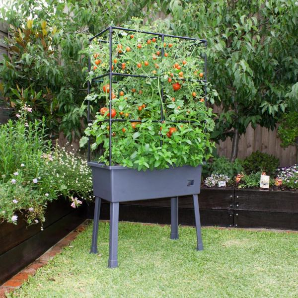 Frame It All Patio Ideas 15 75 In X 31 5 In X 63 In Self Watering Raised Garden Bed With Trellis And Greenhouse Cover 300001602 The Home Depot