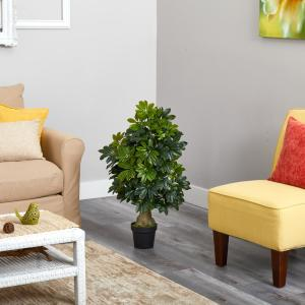 3 ft. Schefflera Artificial Tree (Real Touch)
