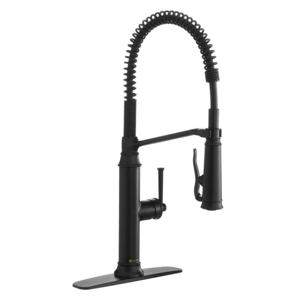 Linscott Single-Handle Coil Springneck Pull-Down Sprayer Kitchen Faucet in Matte Black