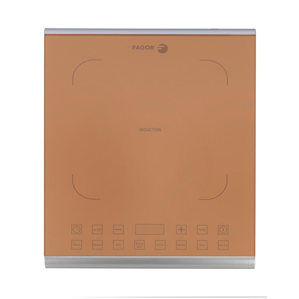 Fagor PRO Induction Hot Plate