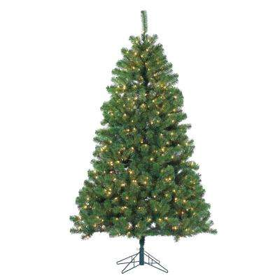 7 ft. Pre-Lit Montana Pine Artificial Christmas Tree with Clear Lights