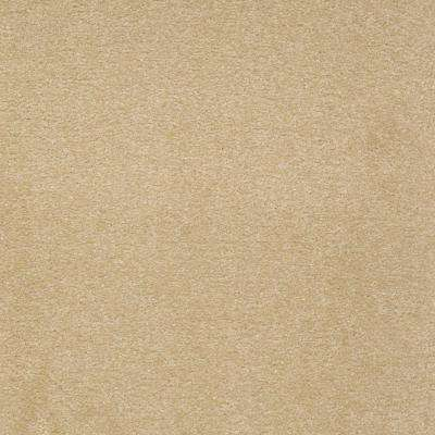 Carpet Sample-Enraptured I - Color Adobe Wash Texture 8 in x 8 in