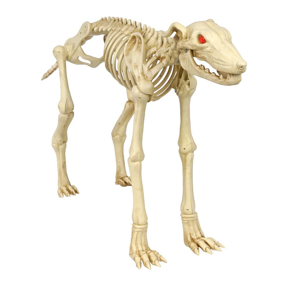 Halloween Skeleton.Home Accents Holiday 3 Ft Animated Skeleton Greyhound With Led Illuminated Eyes