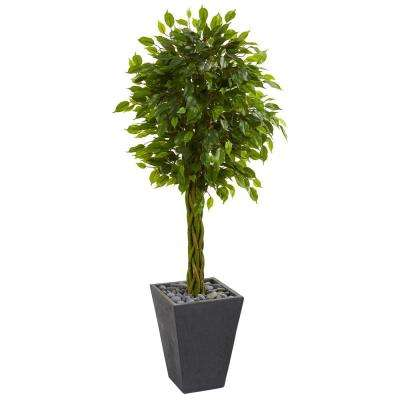 5 ft. High Indoor/Outdoor Braided Ficus Artificial Tree in Slate Planter