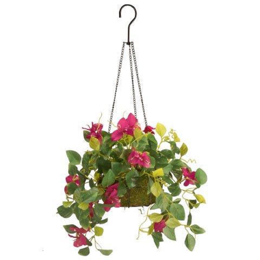 9 in. Bougainvillea Plant Hanging Basket