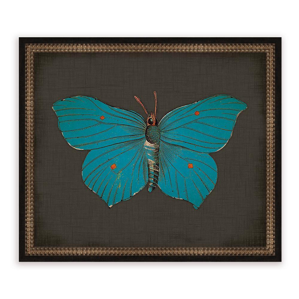 21 in. x 18 in. ''Butterflies on Black III'' Framed Giclee