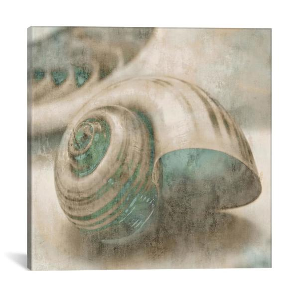 iCanvas ''Coastal Gems II'' by John Seba Canvas Wall Art JOH21-1PC3-12x12