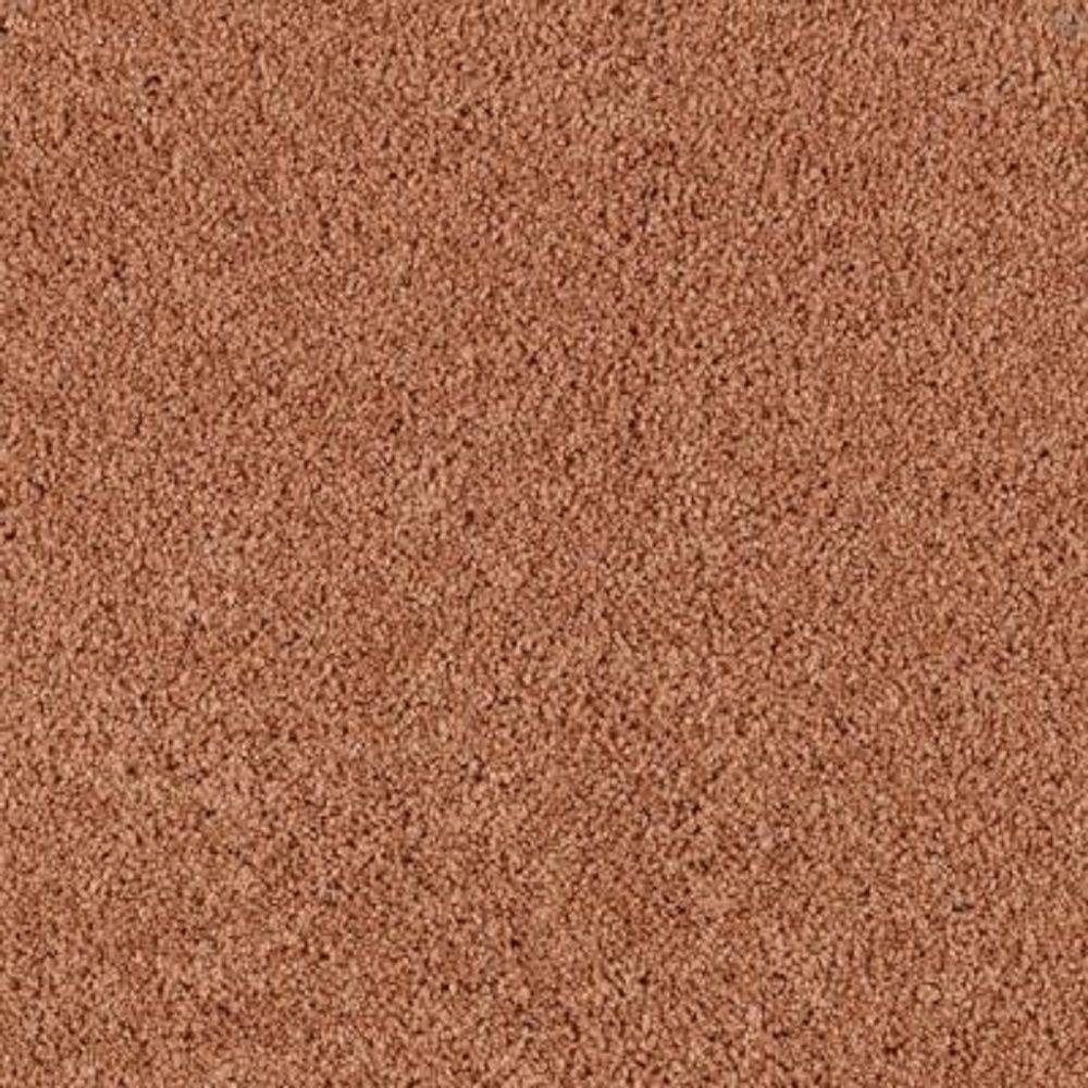 Lifeproof Carpet Sample Barons Court Ii Color Autumn