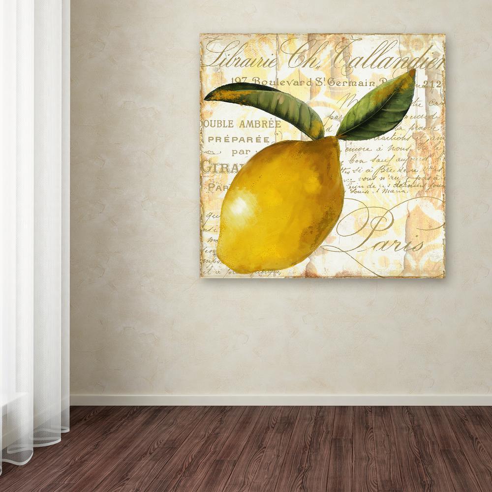 Trademark Fine Art 32 in. x 24 in. \