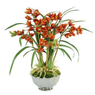 Cymbidium 25 in. Tall Orchids Bowl in Gold Flowers