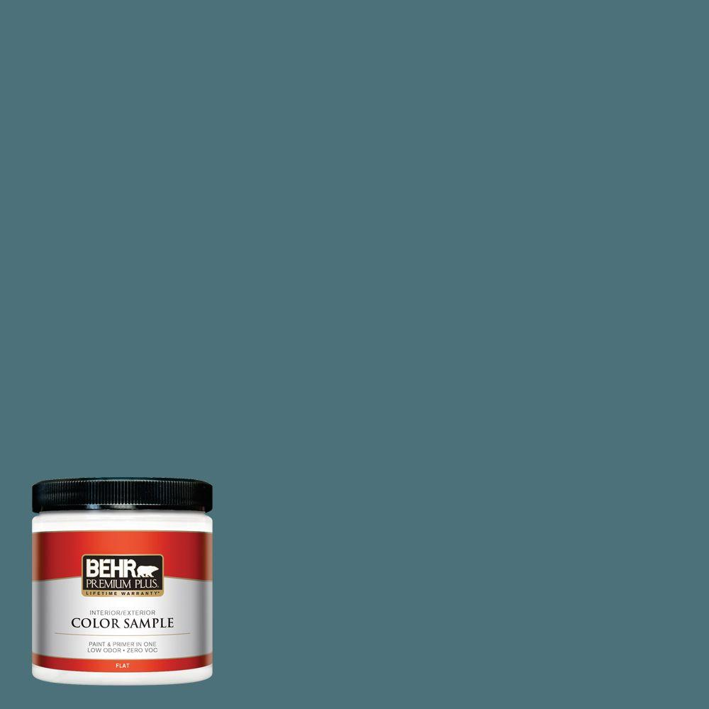 BEHR Premium Plus 8 oz. #S450-6 Tornado Season Interior/Exterior Paint Sample