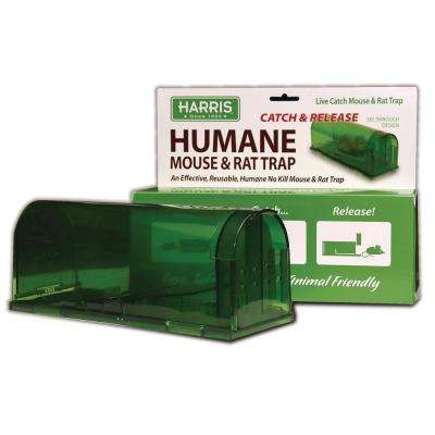 Catch and Release Humane Mouse Trap