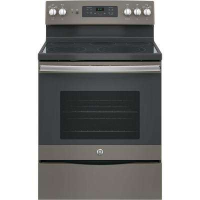 30 in. 5.3 cu. ft. Free-Standing Electric Self-Clean Range with Convection in Slate