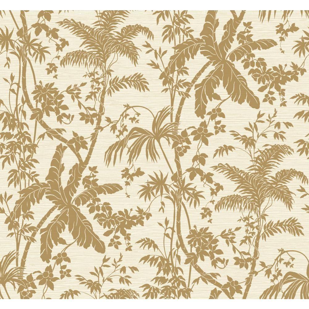 Tropics Palm Shadow Wallpaper
