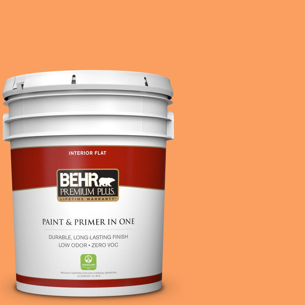 5 gal. #250B-5 Orange Spice Zero VOC Flat Interior Paint