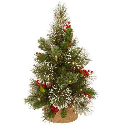 18 in. Wintry Pine Tree with Battery Operated Warm White LED Lights