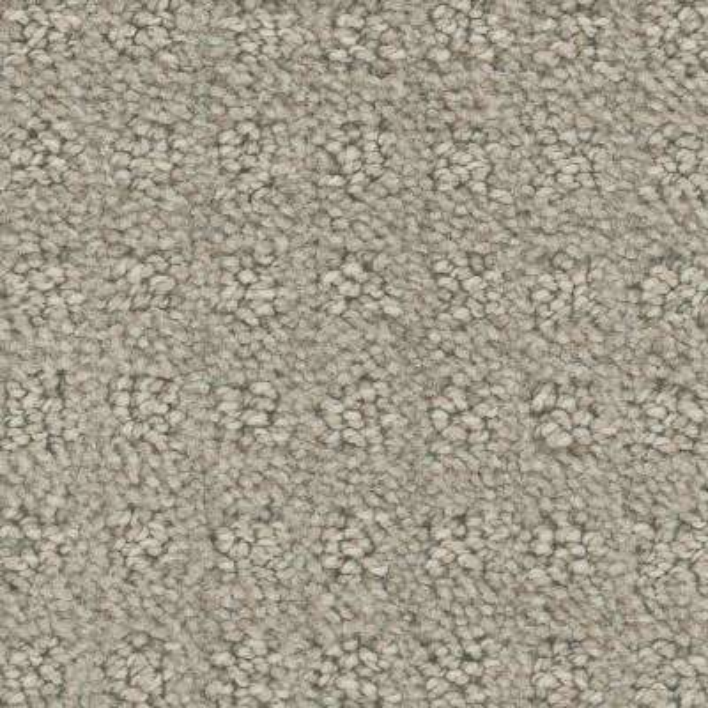 Piroette - Color Opie Pattern 12 ft. Carpet