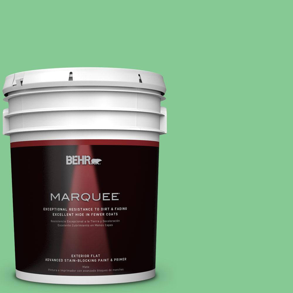 BEHR MARQUEE 5-gal. #P400-4 Good Luck Flat Exterior Paint