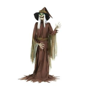 Home Accents Holiday 7 ft. Animated Bone Witch Deals