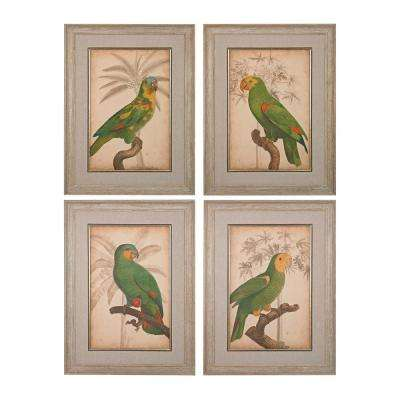 "33 in. x 26 in. ""Parrot and Palm"" Hand Painted Framed Canvas Wall Art (Set of 4)"