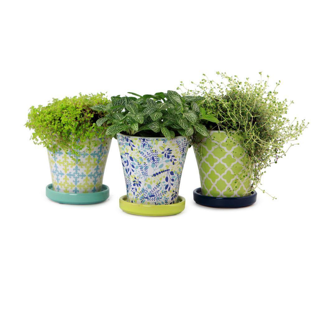 4 in. Ceramic Partridge Vase Assortment Planter